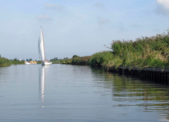 From South Walsham Broad towards St Benets Abbey